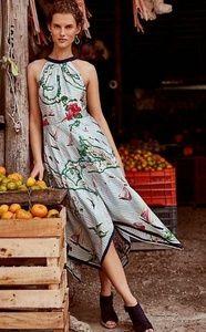 Eva Franco map quest dress Anthropologie
